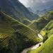 Prolungamento esenzione visto Vietnam
